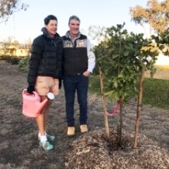 Bronwyn-Henschell-and-Tony-Nolan-with-their-tree